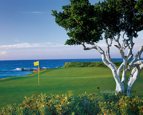 Four Season Resort Emerald Bay Golf Club, Foto: Great White Shark Enterprises, Inc.