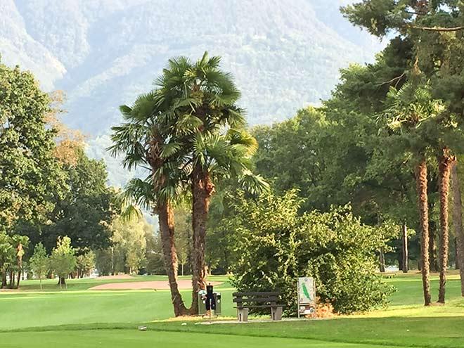 Golfclub Patriziale Ascona Parkland Course mit Palmen und Bäumen