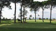 Golf spielen ohne Platzreife