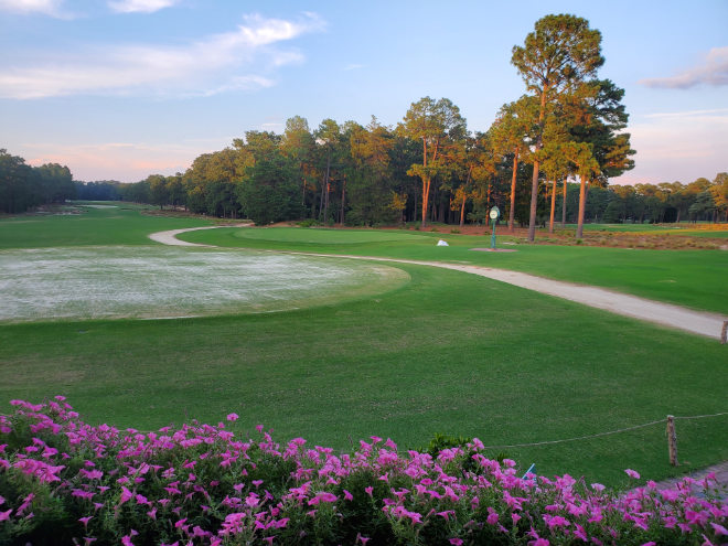 Angesagte Golfplätze USA: Pinehurst Country Club, North Carolina. Photo by Christine Jones on Unsplash
